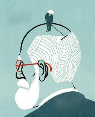 freud cerebro